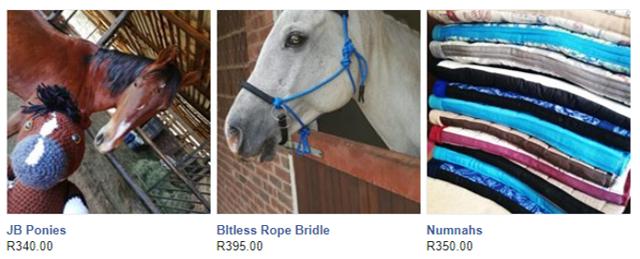 bitless bridle durban horse tack kzn